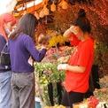 """<p class=""""Normal""""> Chợ hoa Quảng Bá tập nập người bán, kẻ mua trước ngày 8/3.</p>"""