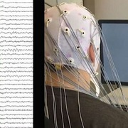 AI đọc dữ liệu não bộ, tạo ra những hình ảnh hấp dẫn