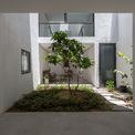 <p> Các không gian trồng cây được phủ bằng đất, mục đích làm vườn theo mùa.</p>