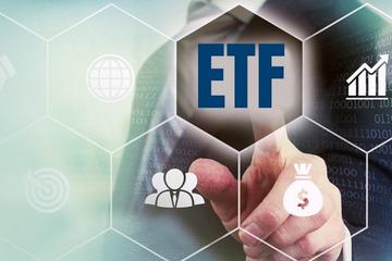 V.N.M ETF thêm vào cổ phiếu KBC