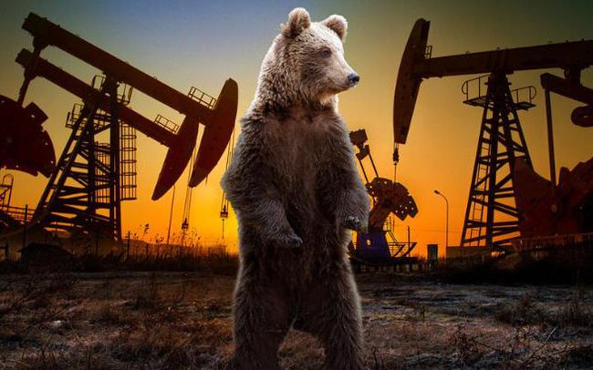Bất đồng về triển vọng thị trường dầu mỏ sau đại dịch Covid-19