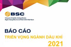 BSC: Triển vọng ngành dầu khí 2021 - Đứng lên sau vấp ngã