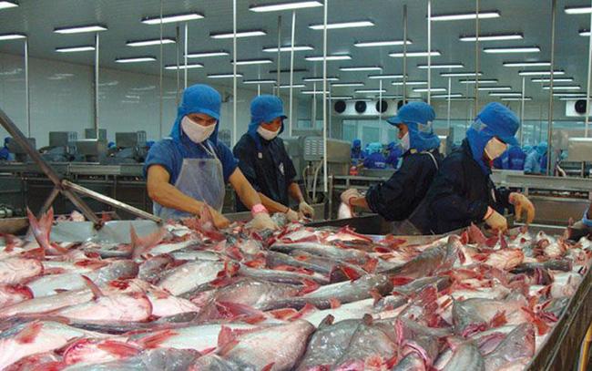 Doanh số xuất khẩu Vĩnh Hoàn 2 tháng đầu năm đạt hơn 1.000 tỷ đồng, tăng 11%