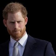 Hoàng tử Harry làm việc cho một startup tại Thung lũng Silicon