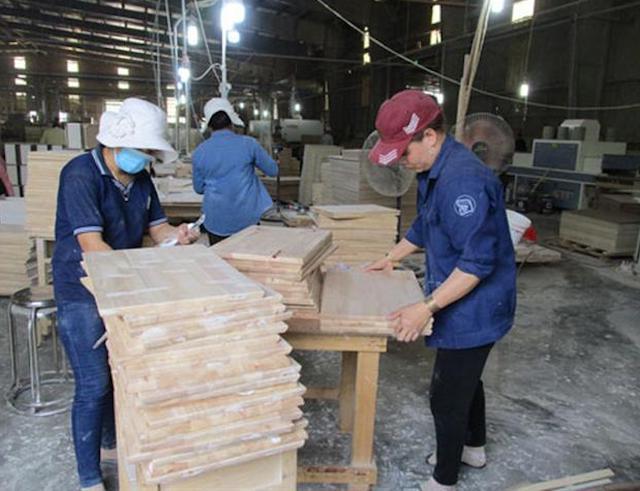 Chế biến gỗ tại Công ty CP Gỗ Dầu Tiếng (tỉnh Bình Dương).