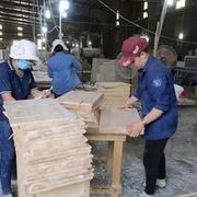 Ngành gỗ miệt mài xuất khẩu