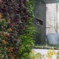 """<p class=""""Normal""""> Cây xanh đã có mặt ở khắp mọi nơi, ánh sáng tự nhiên, gió và mưa có thể đi vào trong nhà. Ranh giới giữa ngoài trời - trong nhà, trên - dưới gần như đã được xóa bỏ ...</p> <p class=""""Normal""""> Không gian ngôi nhà đã trở nên rất hiện đại, tiện nghi mà vẫn giữ được những nét tinh hoa truyền thống của văn hóa Việt Nam.</p>"""