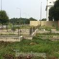 """<p class=""""Normal""""> Không chỉ nhà phố, đất nền mà ngay cả chung cư ở Nhơn Trạch cũng lâm vào cảnh bỏ hoang.</p>"""