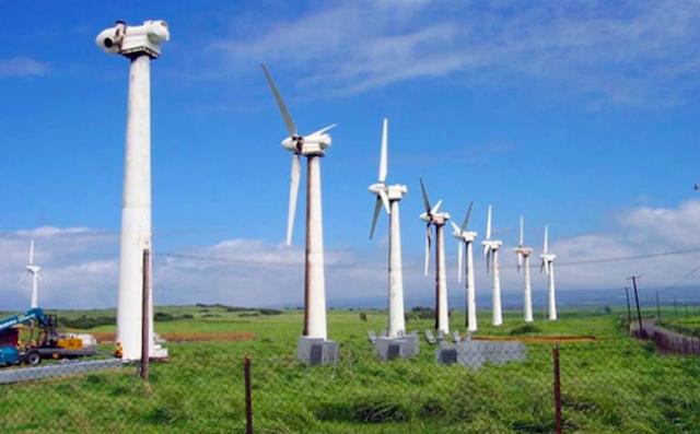 EVN có thể tiếp tục cắt giảm công suất điện gió ở mức cao do thừa điện.
