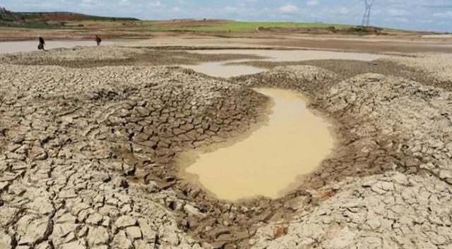Thủ tướng chỉ đạo ứng phó xâm nhập mặn, thiếu nước tại Đồng bằng sông Cửu Long. Ảnh: Báo Chính Phủ.
