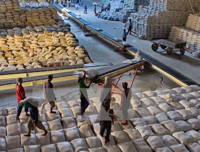 Bốc xếp gạo xuất khẩu tại Công ty CP Lương thực Hậu Giang.