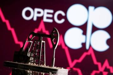 Kỳ vọng gì từ cuộc họp của OPEC+ ngày 1/4