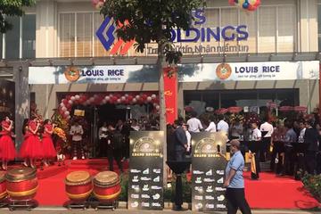 Hậu 'thay máu' cổ đông, Louis Holdings tập trung đầu tư bất động sản