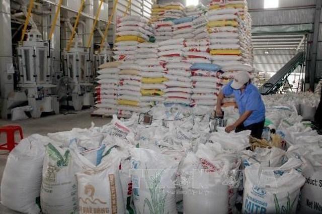 Nhà xuất khẩu gạo Việt Nam hạ giá bán để cạnh tranh với Ấn Độ, Thái Lan