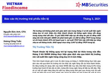 MBS: Báo cáo thị trường trái phiếu tiền tệ tháng 3