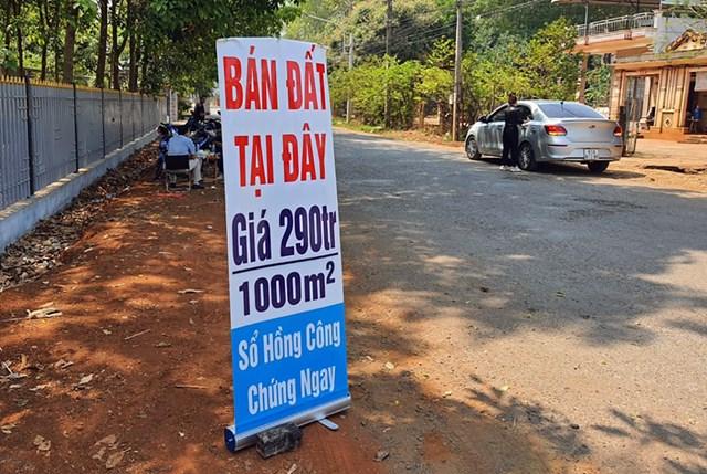 Có nên cấm phân lô bán nền?