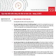 SSI Research: Cập nhật diễn biến dòng vốn đầu tư toàn cầu tháng 3/2021