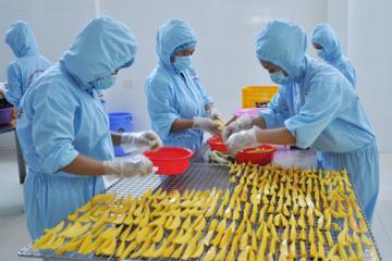Chế biến nông sản: Thách thức gắn vùng nguyên liệu với nhà máy chế biến