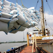 Tuần qua, giá gạo Việt Nam rơi xuống mức thấp 5 tháng