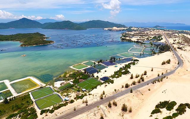 Một góc vịnh Vân Phong.
