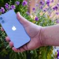 <p> iPhone 12 và 12 mini màu tím được Apple ra mắt trong sự kiện giới thiệu sản phẩm ngày 21/4. Tim Cook, CEO Apple chỉ dành ra khoảng 2 phút để nói về thiết bị. Đây là màn giới thiệu sản phẩm iPhone ngắn nhất của Apple. Ảnh: <em>CNET.</em></p>