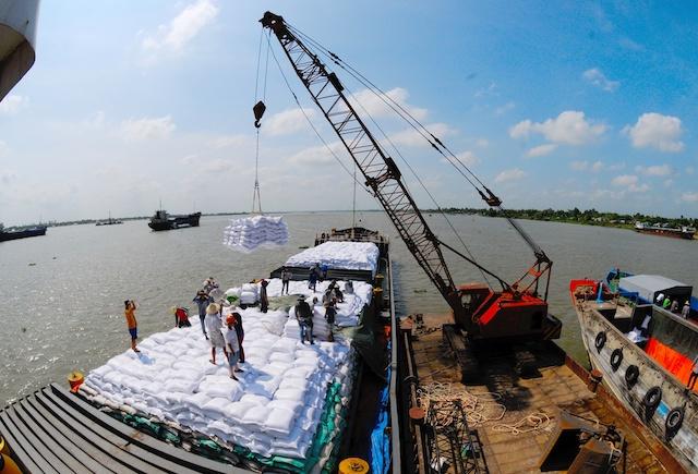 Gạo Việt hưởng lợi khi giá lương thực toàn cầu tăng.