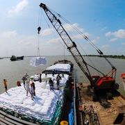 Gạo Việt hưởng lợi khi giá lương thực toàn cầu tăng