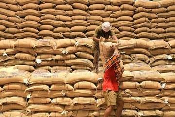 Thị trường nông sản tuần qua: Giá gạo Ấn Độ thấp nhất 5 tháng