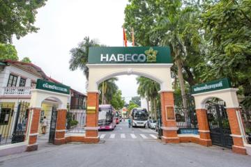 Phục hồi doanh thu, Habeco báo lãi 62 tỷ đồng quý đầu năm
