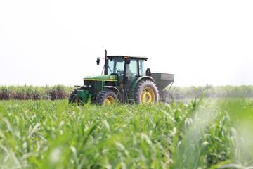 TTC Sugar: Lợi nhuận gộp giảm, đầu tư nhiều cổ phiếu