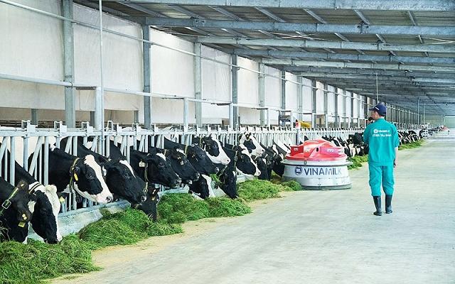 Biên lợi nhuận về mức thấp nhất 4 năm, Vinamilk kỳ vọng vào xuất khẩu và chuỗi 'Giấc mơ sữa Việt'