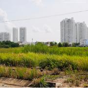 Hôm nay, hệ số điều chỉnh giá đất tại TP HCM có hiệu lực