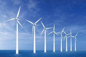 Doanh nghiệp xây dựng 'đổ xô' làm điện gió