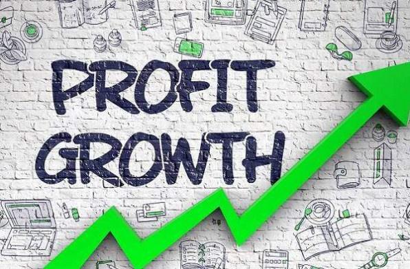 Kết quả kinh doanh nhóm VN30: SSI, Hòa Phát cùng nhóm ngân hàng gây ấn tượng
