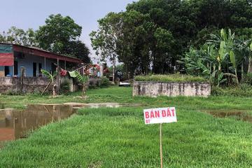 Sốt đất ảo ở Thanh Hoá được kiểm soát