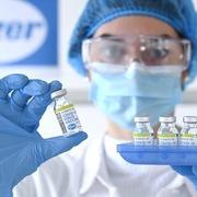 Khẩn cấp xin ý kiến thành viên Chính phủ việc mua vaccine Pfizer