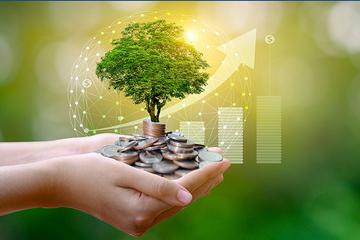 Gần 7.400 tỷ đồng cổ tức sẽ về tài khoản nhà đầu tư trong tháng 6