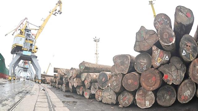 Kiểm soát hiệu quả tính hợp pháp của gỗ nhập khẩu