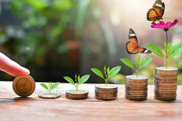Hàng loạt doanh nghiệp có cổ phiếu 'trà đá' lên kế hoạch huy động vốn