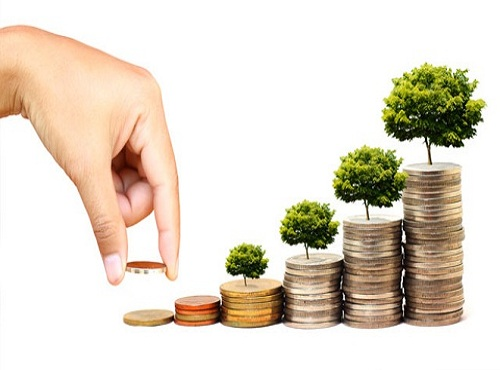 Chứng khoán Trí Việt chào bán gần 36 triệu cổ phiếu, giá 10.000 đồng/cp