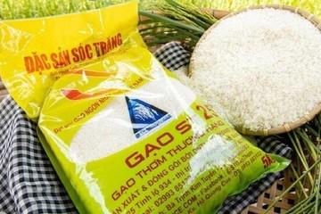 Bộ Nông nghiệp nói gì về cảnh báo mất quyền thi 'Gạo ngon nhất thế giới'?