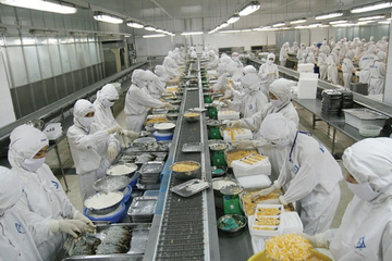 Doanh số Sao Ta tiếp tục tăng trưởng, nuôi tôm hiệu quả cao