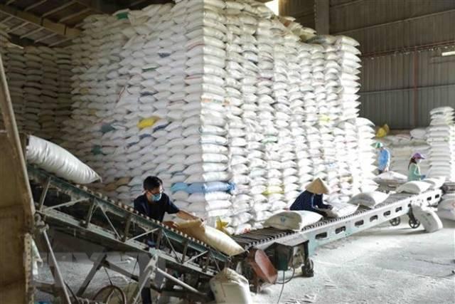 Thị trường nông sản tuần qua: Giá gạo Việt Nam, Thái Lan đều giảm