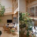 """<p class=""""Normal""""> Những bức tường hàng xóm chắn ngang khi cửa sổ được mở ở tường bên ngoài. Do đó, gia chủ coi việc sử dụng sân trong cũng có hiệu quả về mặt ánh sáng vào ban ngày.<span>Ý tưởng trồng cây ở sân trong được nảy sinh.</span></p>"""