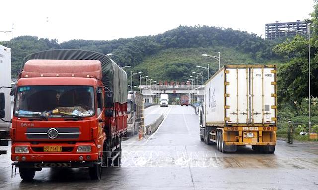 Đề xuất cấp 'hộ chiếu vaccine' cho lái xe chở hàng xuất khẩu qua biên giới