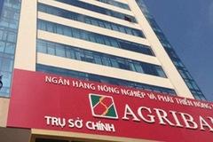 Agribank rao bán khoản nợ của con rể 'chúa đảo' Tuần Châu