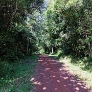 Đồng Nai đưa 139 ha đất rừng vào quy hoạch đất ở