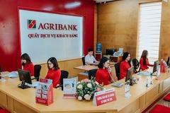 Nợ có khả năng mất vốn Agribank tăng 30%, khoản phải thu tham ô giảm