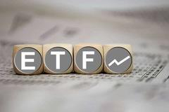 Hai quỹ ETF V.N.M và FTSE sẽ cơ cấu ra sao trong tuần 14-18/6?