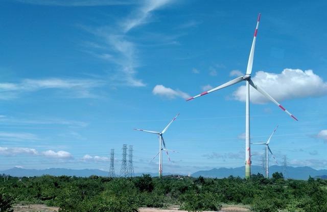 Quảng Bình thu hồi gần 8 ha đất rừng để làm trang trại điện gió